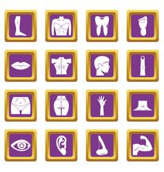body parts icons set purple vector image