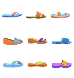 set of colorful women slippers vector image