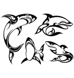 symbols of sharks vector image