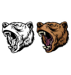 anggry roaring grizzly bear head vector image