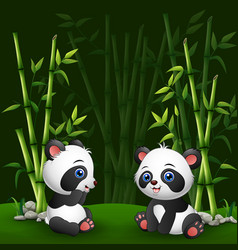 cartoon baby panda in the jungle bamboo vector image
