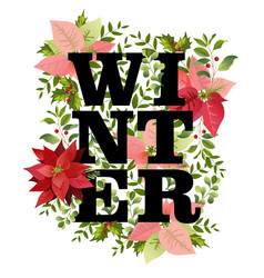 christmas design in winter poinsettia vector image