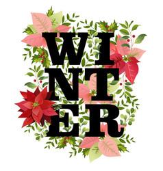 christmas design in winter poinsettia vector image
