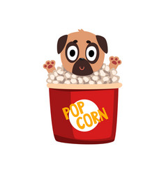 Cute funny pug dog character inside a basket of vector