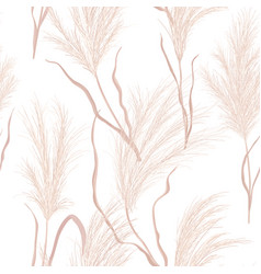 dry pampas grass seamless pattern vector image