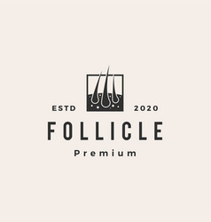 follicle hipster vintage logo icon vector image