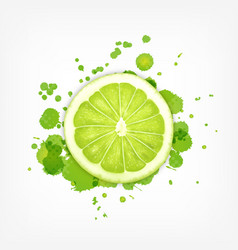Lime slice with splash vector