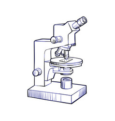 microscope sketch and line art vector image