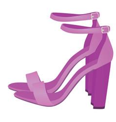 purple sandals vector image