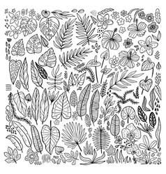 Tropical plants floral doodle set outline vector