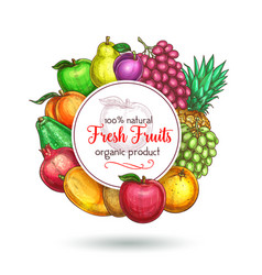 exotic fresh natural fruits poster vector image vector image