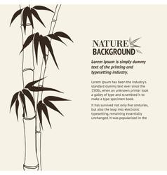 Bamboo banner set vector