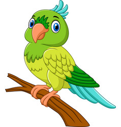 cartoon parrot on tree branch vector image