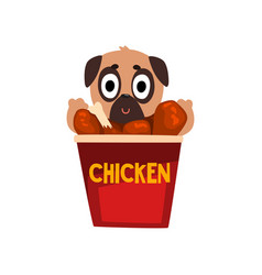 Cute pug dog inside a basket of fried chicken vector