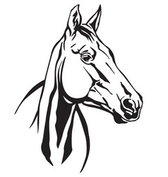Decorative horse 5 vector