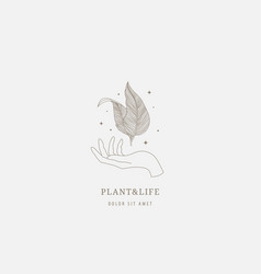logo template - hand holding leaves linear vector image