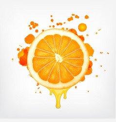 Orange slice with dripping juice vector