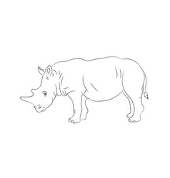rhinoceros worth drawing lines vector image