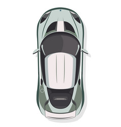 The sport car top view in flat style isolated on vector