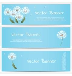 Dandelion banner on blue background vector image