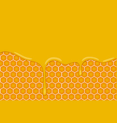 Background with honeycombs and honey vector