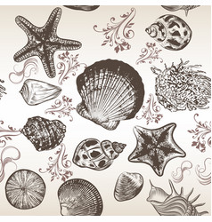 Background with sea shells in engraved style vector