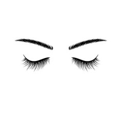 black eyebrows and eyelashes eyes closed vector image