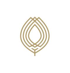 gold leaf logo icon vector image