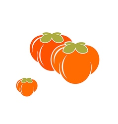 Persimmon Abstract fruit on white background vector