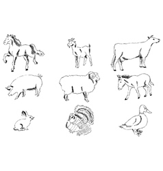 Pets Farm Pencil sketch by hand vector
