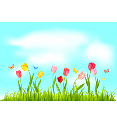 spring nature flowers vector image