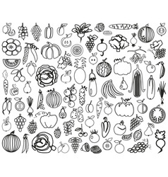 Vegetables and Fruits contour vector image