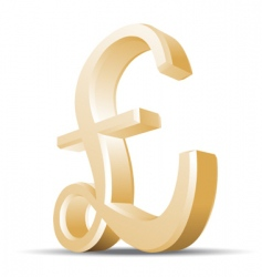 pound vector image vector image