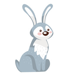 bunny character sitting still rabbit or hare with vector image