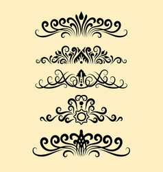 Floral ornament decorations vector image