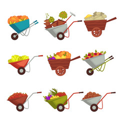 Gardening wheelbarrow with harvest vector