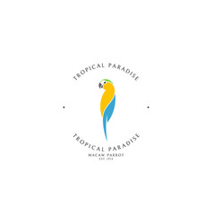 macaw parrot logo template vector image
