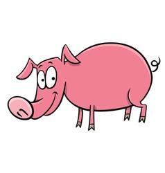 Pig cartoon character vector