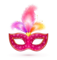 Pink carnival mask with feathers vector image
