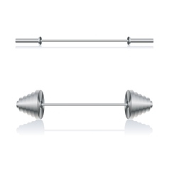 Set barbells vector image