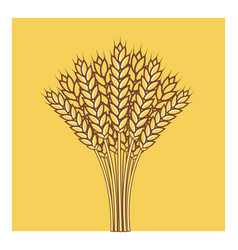 wheat ears barley or rye flat icon vector image