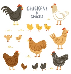Chickens and chicks set vector image vector image
