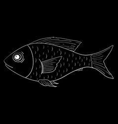 fish outline doodle on black background vector image vector image