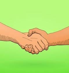 shaking hands vector image