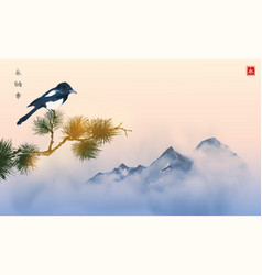 Big magpie bird pine tree branch and far blue vector