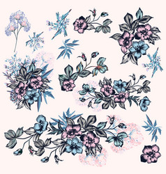 collection hand drawn flowers in vintage style vector image