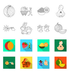 design test and synthetic symbol set of vector image