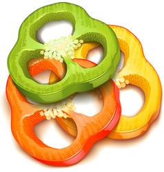 Pepper slice isolated vector