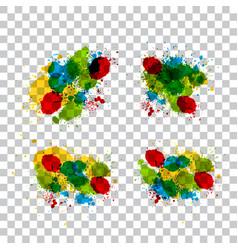 isolated splashes vector image
