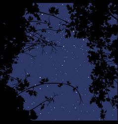 Background night starry sky through vector